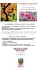 PSICOAROMATERAPIA OREKAN NATURA 5 DE NOVIEMBRE