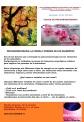 PSICOAROMATERAPIA EGUZKILOREAK 30 DE OCTUBRE