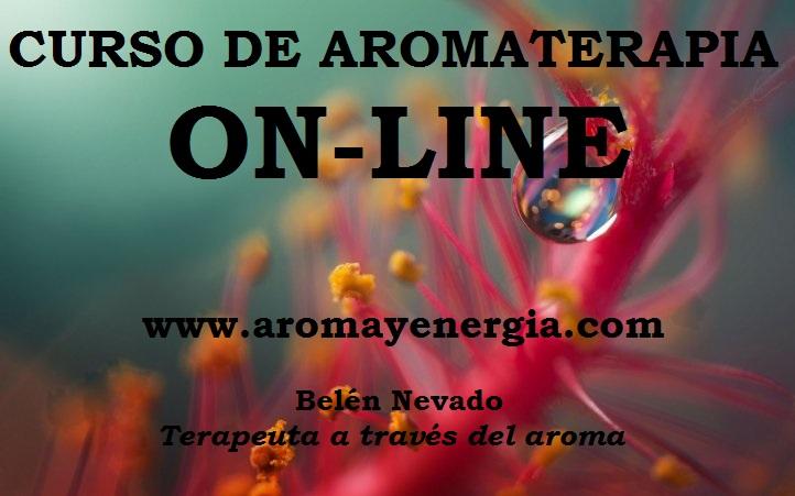 foto-curso-aromaterapia-on-line-copia-copia