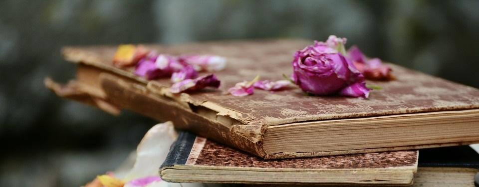 Bibliografía aromática